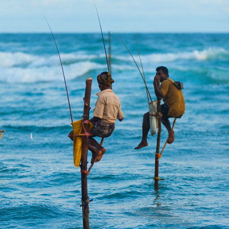 Galle Dutch Fort - Madu River - Stilt Fishermen - Turtle Hatchery