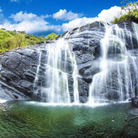 Tea Estate - Horton Plains National Park - Nuwara Eliya day trip from kandy
