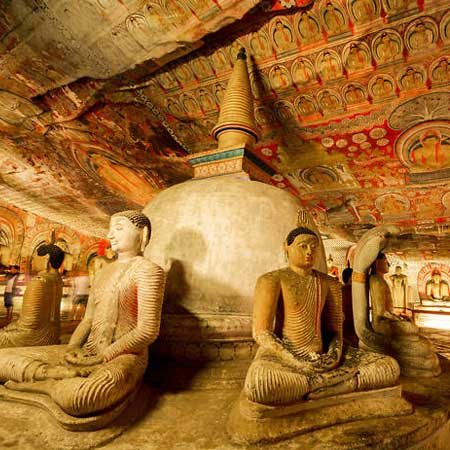 Dambulla Sri Lanka | Things to do in Dambulla