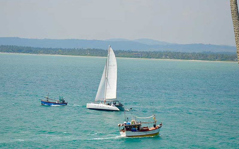 Sea sailing tours Weligama - Mirissa