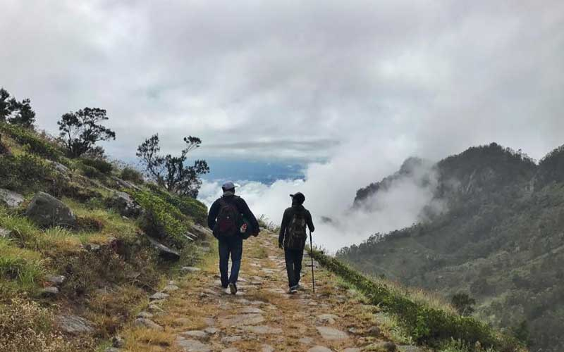 Hiking & trekking in Devil's Stair Case trail to Ohiya, Trekking Sri Lanka