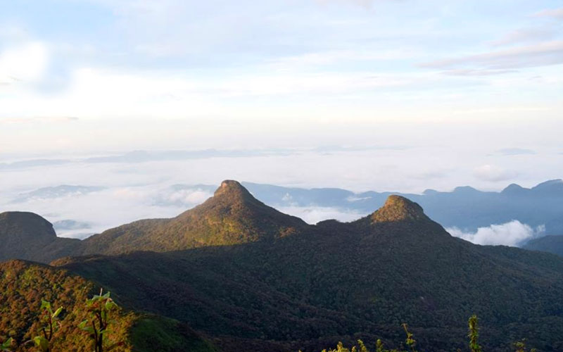 Off season hike to Adams peak via Peak Wilderness sanctuary, Sri pada hiking
