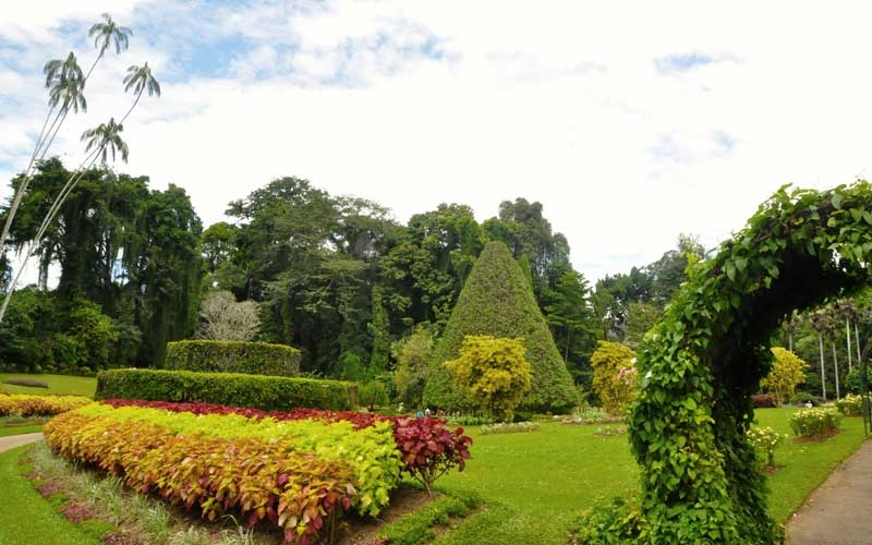 Peradeniya Botanical Garden | Things to do in Kandy