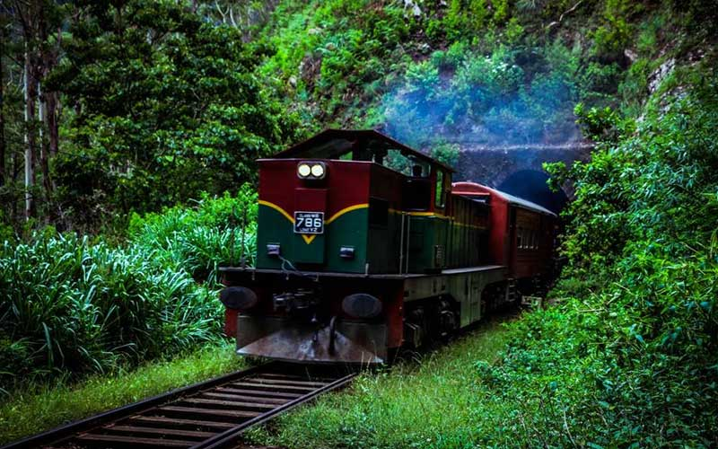 Rail hike - Pattipola to Horton Plains via Ohiya