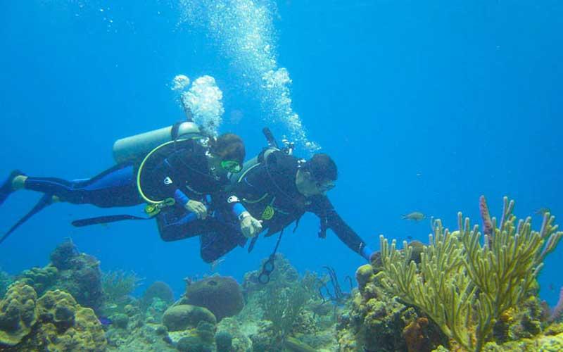 Scuba Diving in Sri Lanka | Diving Sri Lanka