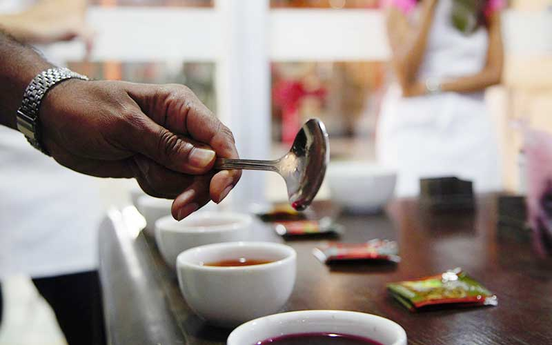 Tea production, packaging and tasting