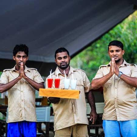 Yala Safari Camping, camping in yala, Yala camping with safari