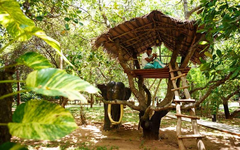 Elephant Reach Hotel , Yala National Park near hotels