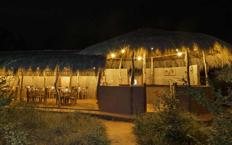 Leopard Nest Yala, yala Camping places, luxury glamping experience